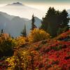 Lost in a Mountain Dream