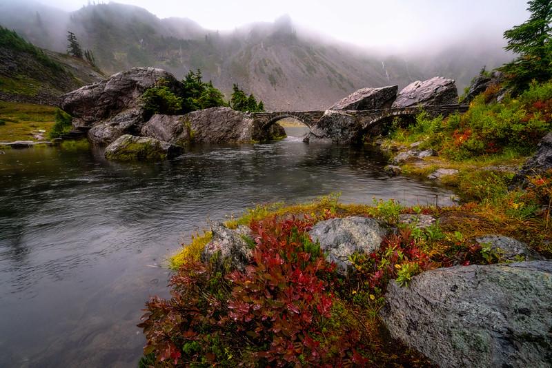 Rainy Day Autumn Dream