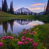 Mount Rainier: Reflection, Sunset and Wildflowers