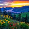 Columbia Gorge Spring Magic