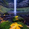 When a moment of peace and tranquility touches the soul, this is what I experienced at Silver Falls State Park.