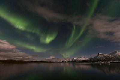 Skjettenfjorden northernlight