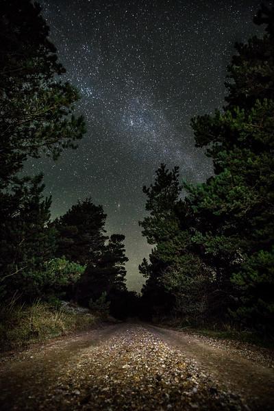 Vejen ind i mørket