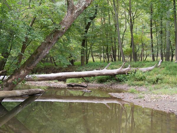 Northwest Branch Park 1
