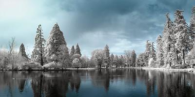 Crystal Springs Pond