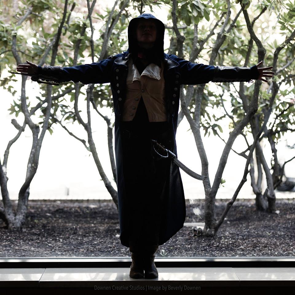 Leap of Faith, Assassins Creed