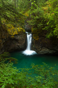 Fountain of Youth, Mount Rainier