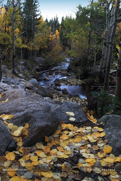 Photograph by Mary Palaskonis<br /> <br /> Rocky Mountain National Park, Colorado