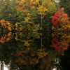 Photograph by Mary Palaskonis<br /> <br /> Vermont
