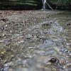 Photo by Mary Palaskonis<br /> <br /> Kaskaskia Canyon, Starved Rock State Park, Illinois