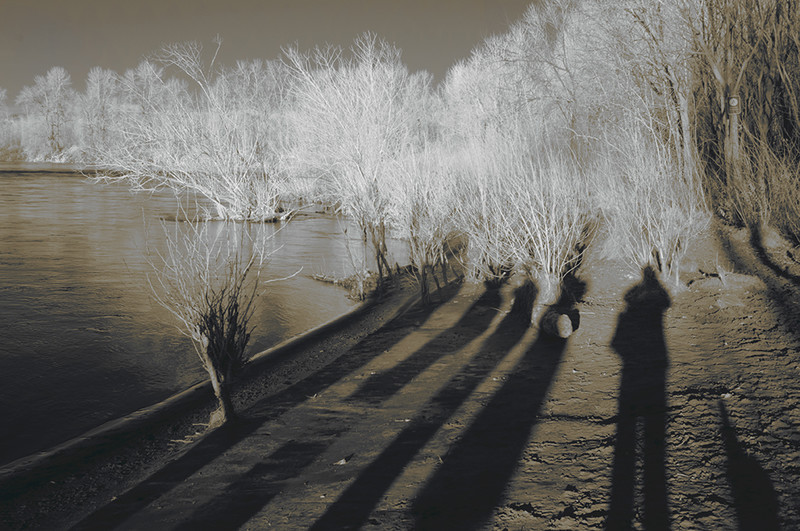 Shadows next to Sandy River, Oregon