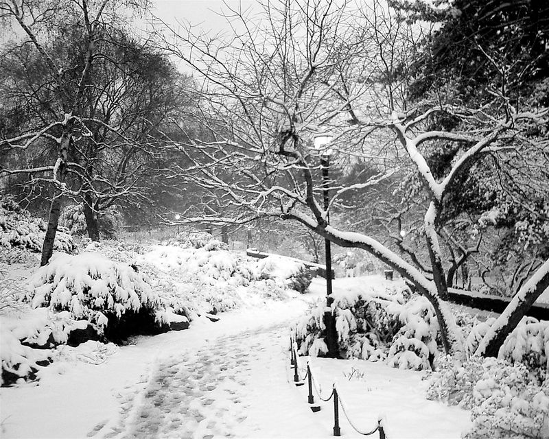 Fort Tryon Path