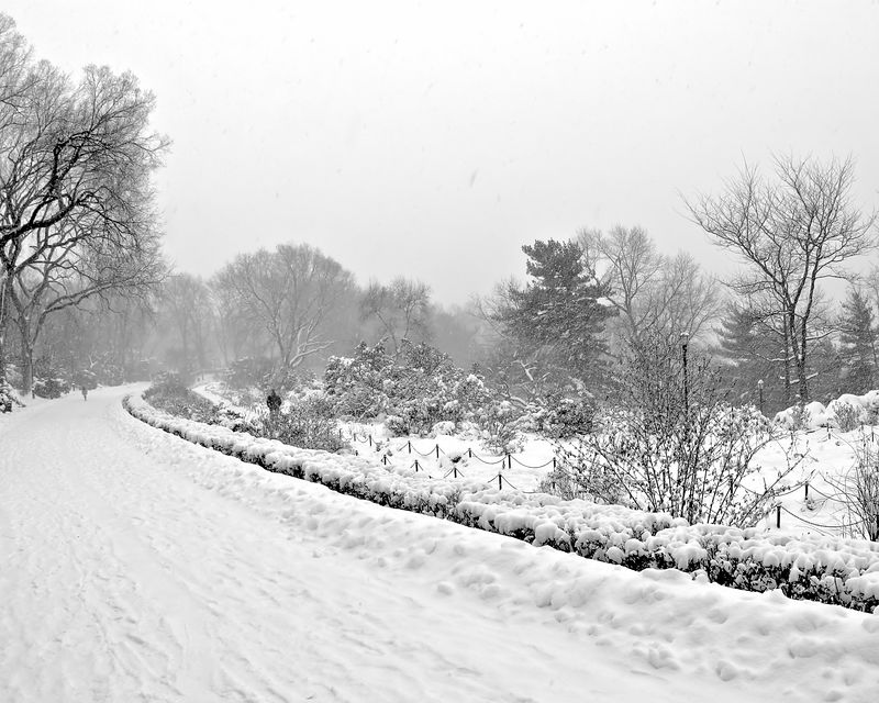 Fort Tryon Gardens in Winter