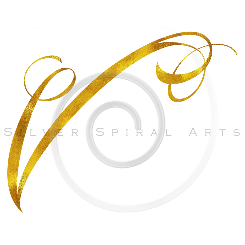 Monogram V Gold Faux Foil Monograms Metallic Initials