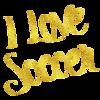 I Love Soccer Gold Faux Foil Metallic Motivational Quote