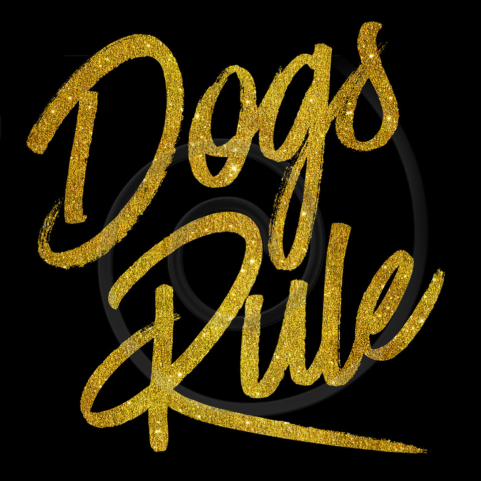 Dogs Rule Gold Faux Foil Metallic Glitter Quote