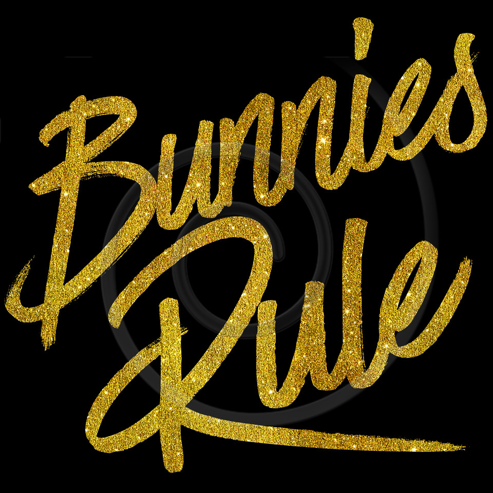 Bunnies Rule Gold Faux Foil Metallic Glitter Quote