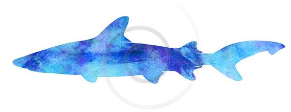 Vintage Shark Silhouette Purple Watercolor