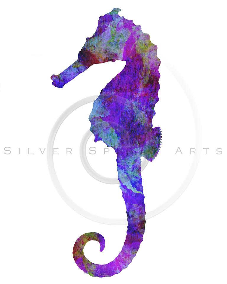 Vintage Seahorse Watercolor Silhouette