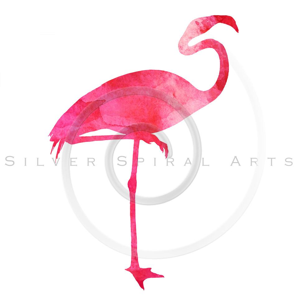 Pink Flamingo Vintage Animal Watercolor Silhouette