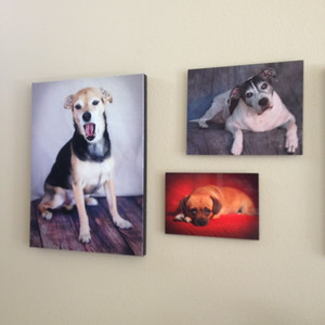 Canvas Print with Metal Prints