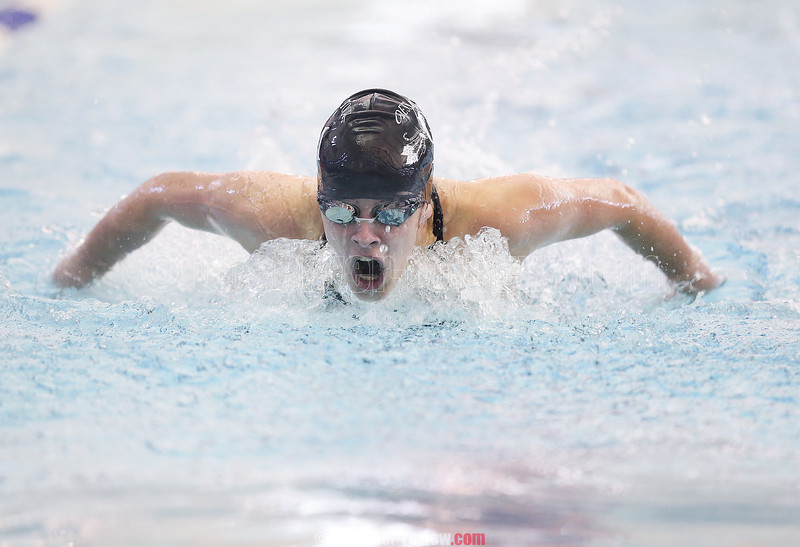 Odessa-Montour's Tori Reese competes in the butterfly event, Saturday, Oct. 28.