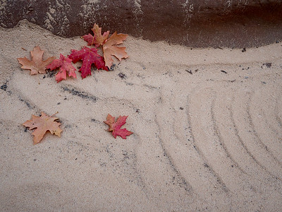 Rock, Sand And Leaves #2