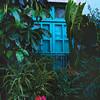 Tropical Door, Guanajuato