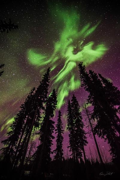 Alaska-Adventures-539