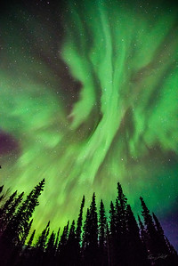 Alaska-Adventures-2321