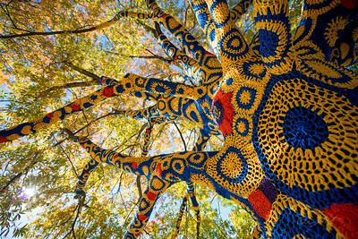 Blue-&-Gold-Quilted-Tree- WVU-Morgantown-WV-1