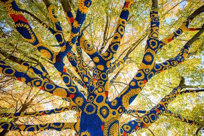 Blue-&-Gold-Quilted-Tree- WVU-Morgantown-WV-4