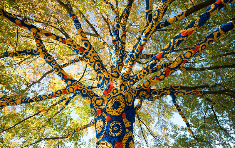 Blue-&-Gold-Quilted-Tree- WVU-Morgantown-WV-3