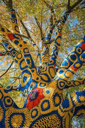 Blue-&-Gold-Quilted-Tree- WVU-Morgantown-WV-2