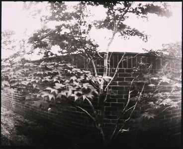 "untitled, 2005, 8"" x 10"", blk & wht pinhole silver print"