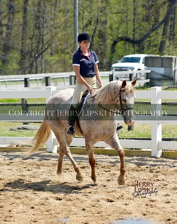 May 5th 2019     Open Horse Show