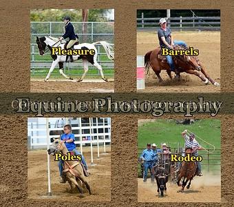 Equine Photo's