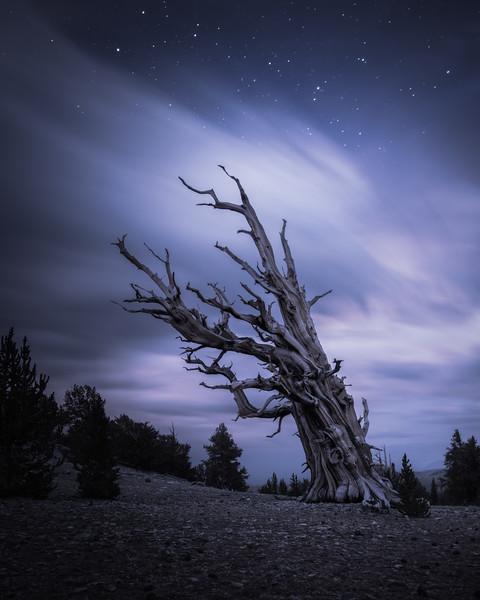 california landscape photography