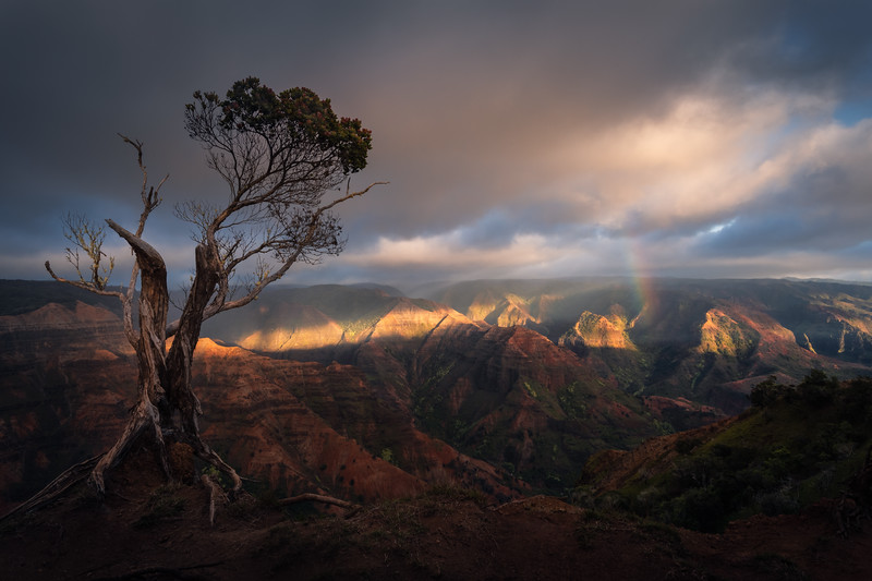 Hawaii Landscape Photography, Kauai Rainbow
