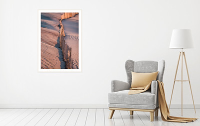 Framed Photography Prints for Home Decor