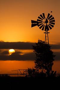 Windmill-Sunrise