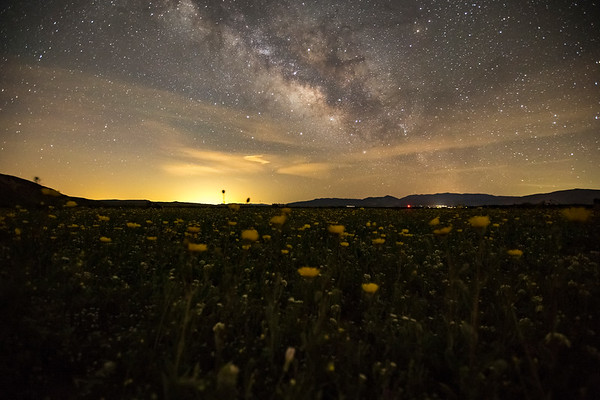 Super Bloom Milky Way