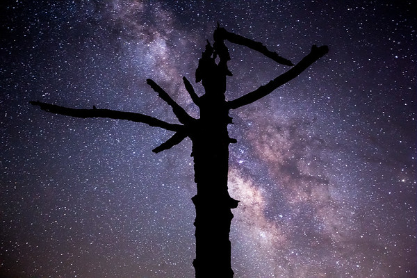 The Reaper and Milky Way