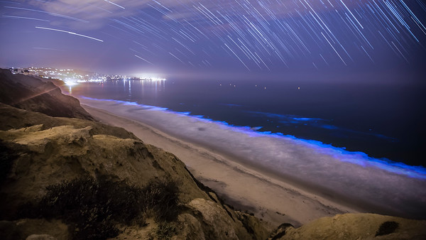 Red Tide Over La Jolla Star Trail
