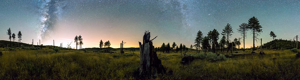 Filaree Meadow 360 Milky Way Panorama