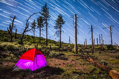 Camping Star Trails