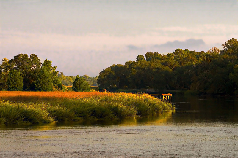 October Color-Ashley River