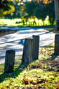 Posts And Trail