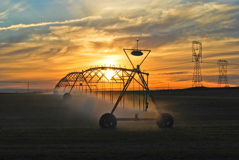 Irrigation In Boardman, Oregon