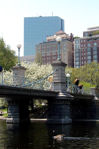 Boston - Bridge in Public Garden